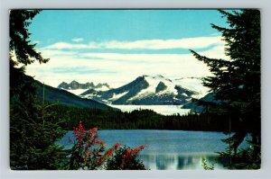 Juneau AK-Alaska, Mendenhall Glacier in Mendenhall Valley Chrome Postcard