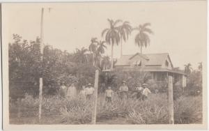 Panama Postcard Real Photo c1910 NATIVES Homes Trees Central America