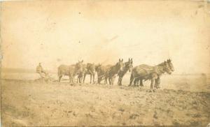 C-1910 Farming Agriculture Horse Plow Team RPPC Photo Postcard 5721