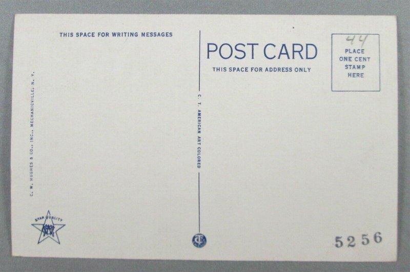 Rock Point, Lake Champlain, Burlington VT Postcard (#6402)