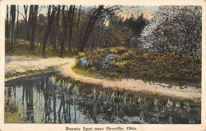 Orrville Ohio Scenic Waterfront Greeting Antique Postcard K89511