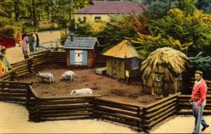 Michigan Detroit Belle Isle Children's Zoo The Three Little Pigs 1953