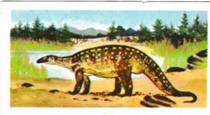 Trade Cards Brooke Bond Tea Prehistoric Animals No. 10 Plateosaurus