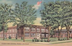 Michigan Sturgis High School