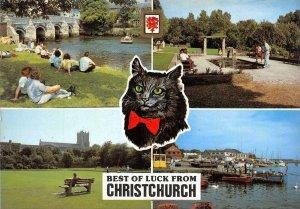 Dorset Multi View Postcard Best of Luck from Christchurch, Black Cat AX1