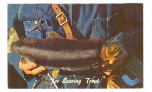 The Fur Bearing Trout, Fort Collins, Colorado, PU-1965