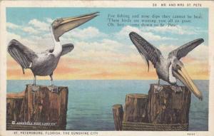Mr. & Mrs. St. Pete, Pair of Pelicans Perched On Stumps, St. Petersburg Flori...