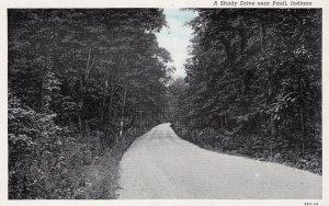 Indiana A Shady Drive Near Paoli Curteich