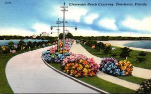 Florida Clearwater Beach Causeway