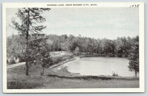 Rogers City Michigan~Curvy Road Past Sunken Lake~1930s B&W Blue Sky Postcard