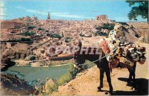Postcard Modern Toledo View General Donkey Donkey
