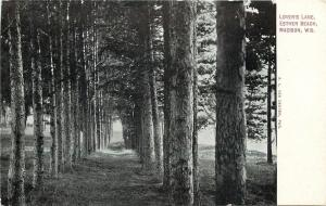 Madison WI~Lovers Lane Thru Straight, Tall Trees @ Esther Beach~1920s Postcard