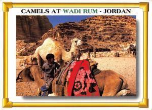 BT11943 Camels at wadi rum camels chamel      Jordan
