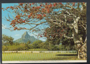 Mauritius Postcard - View of The Rempart Mountain From Tamarin Beach   T4172