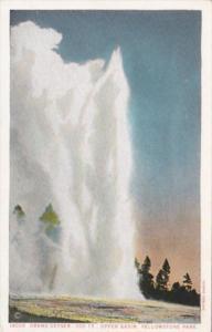 Grand Geyser Upper Basin Yellowstone National Park