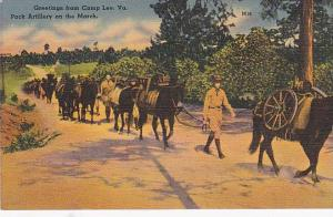 Pack Artillery On The March, Camp Lee, Virginia, 1930-1940s