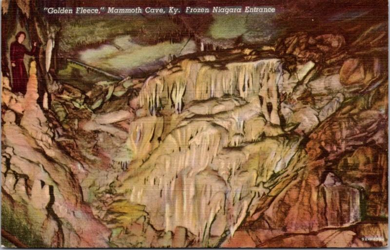Golden Fleece Mammoth Cave Kentucky KY Frozen Niagara Unused Linen Postcard D60
