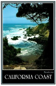California Mendocino Coast Where Forest Meets The Sea
