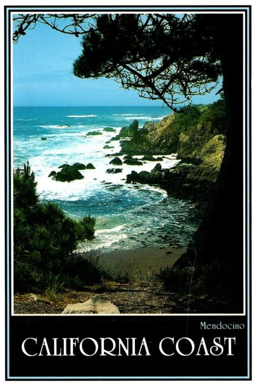 California Mendocino Coast Where Forest Meets The Sea