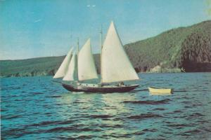 Sailing in Bay of islands, Newfoundland, Canada, 50-70s
