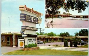 Spartanburg, South Carolina SC Postcard PEACH BLOSSOM MOTEL Highway 85 Roadside
