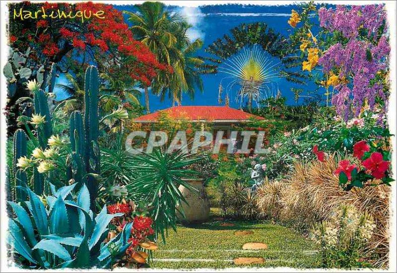 Postcard Modern French Antilles Martinique Tropical Garden