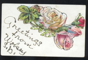 GREETINGS FROM WOLSEY SOUTH DAKOTA PINK ROSES VINTAGE POSTCARD