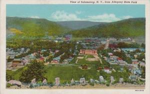 New York Salamanca View From Allegheny State Park 1947 Curteich