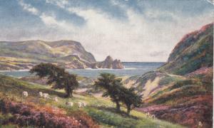 GLAMORGAN , UK , 00-10s ; TUCK ; Three Cliffs Bay