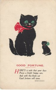 Mother Black Cat and her kitten, Poem by Susan Holton, 1900-10s