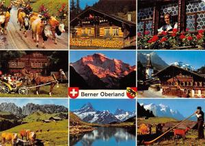 Switzerland Berner Oberland multiviews Lake Mountains Cattles Horse Carriage