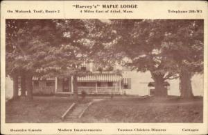 Athol MA Harvey's Maple Lodge c1910 Postcard