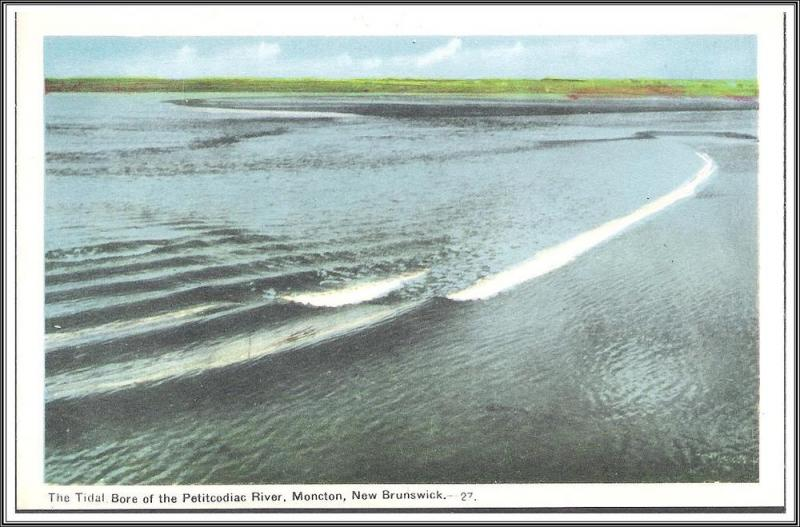 New Brunswick Canada The Petitcodiac River Postcard