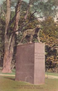 The Catamount In Bronze Bennington Beatiful In Bennington Vermont Handcolored...