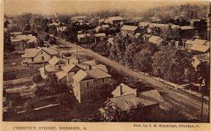 F53/ Dresden Ohio Postcard c1910 Chestnut Street Homes Birdseye