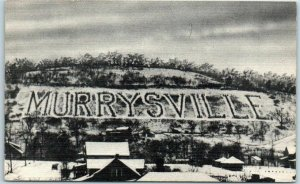 1940s Murrysville PA Postcard Largest Sign in the World City Name / Pine Trees