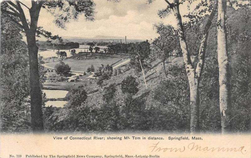 25736 MA, Springfield, 1905, View of Connecticut River, Mt. Tom in distance, ...
