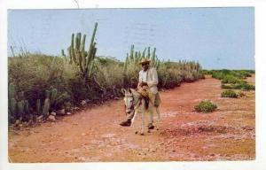 Man riding donkey, Curacao, N.A., PU-1965