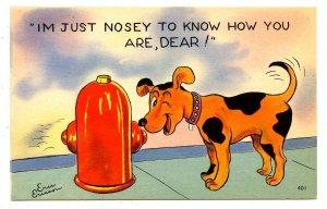 Humor - Just Nosey