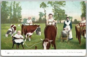 MULTIPLE BABIES COW MILKING & RIDING ANTIQUE POSTCARD