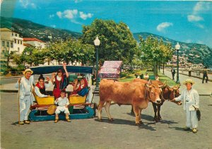 Portugal Postcard Madeira Funchal native people bull cart folklore