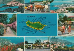 Portugal the best views of Madeira map & multi views postcard
