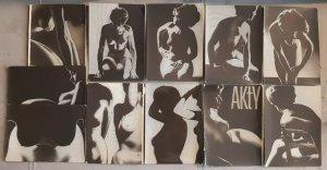 Lot 11 risque pictorials czech photographer Jiri Nechvil female model silhouette