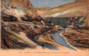 Syria Damas La Promenade de la Vallee al Rabwe River Postcard