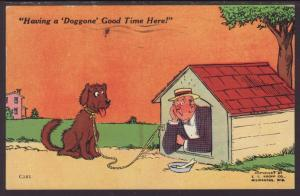 Having a Doggone Good Time Here,Man in Dog House Postcard