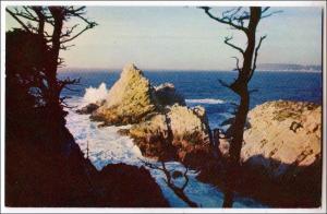 CA - Pinnacle Point, Lobos State Park