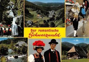 Der romantische Schwarzwald, Wasserfalle, Haus, Village House River Waterfall