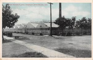 E51/ New Haven Indiana Postcard 1916 Floral Company Greenhouse Store