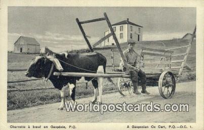 Gaspesie, PQ Canada, du Canada Charrette a baeuf, Gaspesian Ox Cart Gaspesie,...