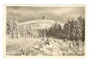 RP, Pines Covered By Snow, Gr. Feldberg I. T. 881m., Germany, 1920-1940s